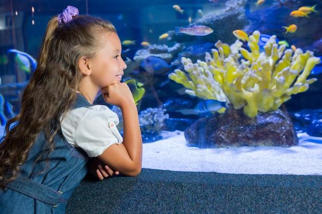 Kleines mädchen, das aquarium betrachtet
