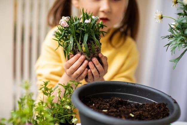 Kleines mädchen, das blumen auf dem balkon hält und pflanzt, nahaufnahme