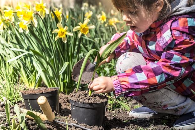 Kleines mädchen, das blumen im garten, tag der erde pflanzt. kind hilft auf der farm.