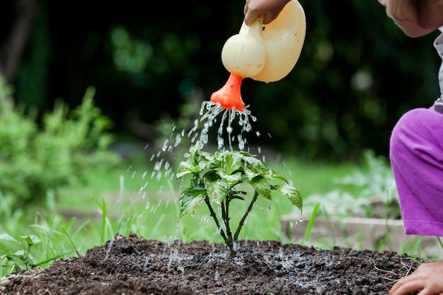 Kleines mädchen, das jungen baum mit bewässerungstopf wässert