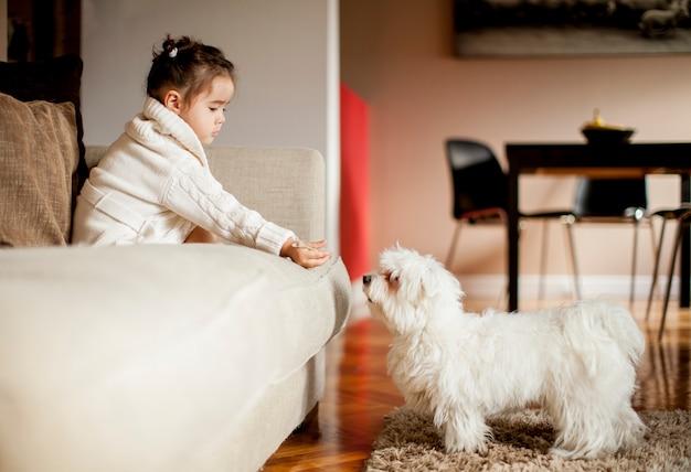 Kleines mädchen, das mit weißem hund im raum spielt