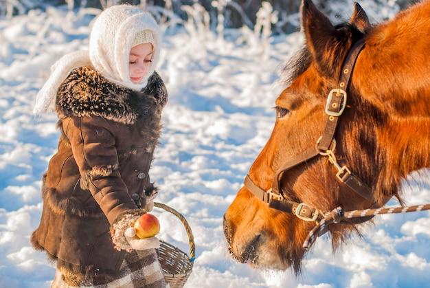 Kleines mädchen in baumwollkleidung streckt den apfel eines pferdes an einem winterfrostigen sonnigen tag.