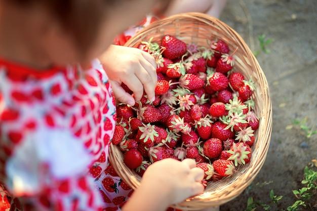 Kleines mädchen sitzt auf dem boden und hält einen weidenkorb mit erdbeeren auf ihrem schoß, draufsicht