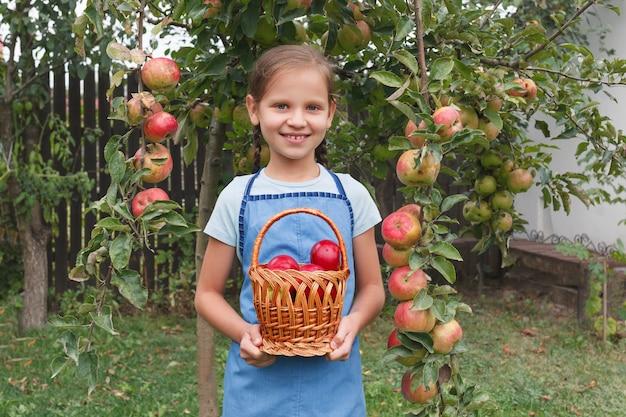 Kleines mädchen steht auf dem hintergrund des gartens und hält einen korb mit roten äpfeln