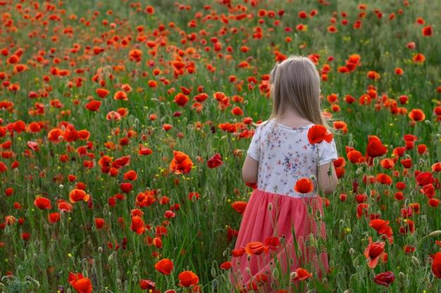 Kleines nettes blondes kindermädchen im weißen und roten kleid auf auf dem mohnblumengebiet bei sonnenuntergang