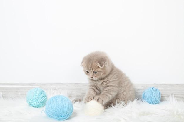 Kleines rotes kätzchen sitzt im raum und spielt mit fäden