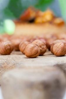 Kleines rundes törtchen mit verschiedenen füllungen, knuspriges törtchen mit haselnüssen, erdnüssen und anderen zutaten, teigtörtchen mit nüssen und trockenfrüchten umhüllt von karamell