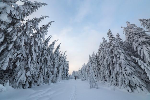 Kleines silhouetteof ein touristischer wanderer, der mit den angehobenen armen auf berghang mit schnee steht, bedeckte gezierte bäume und klaren himmel.