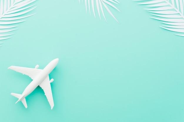 Kleines spielzeugflugzeug mit weißen palmblättern