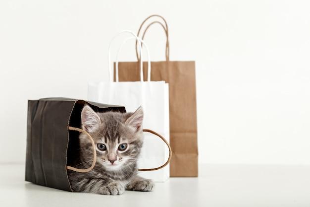 Kleines tabbykätzchen versteckt sich in einer papiertüte. katze in liefertüten. einkaufen verkauf kaufkonzept mit kopienraum auf weißem hintergrund.