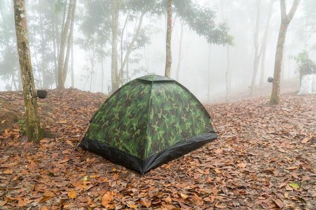 Kleines tarnzelt mitten in dem wald mit weißem nebel im hintergrund.