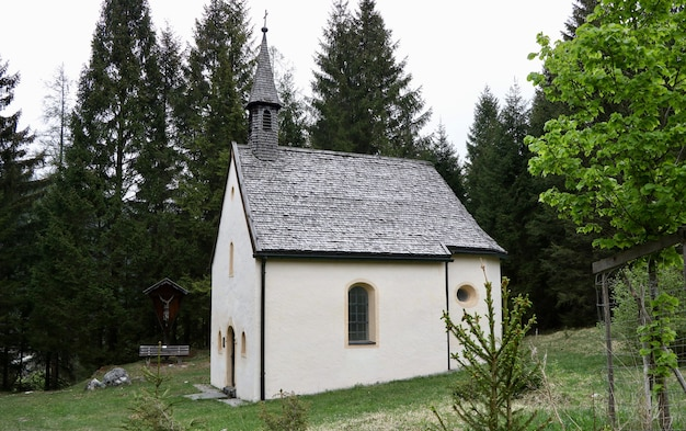 Kleines weißes kirchengebäude in einem grünen land, umgeben von hohen tannen