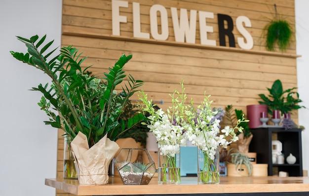 Kleinunternehmen. modernes blumengeschäft interieur. blumen-design-studio, verkauf von dekorationen und arrangements. blumen lieferservice und verkauf von heimischen pflanzen in töpfen, holzvitrine.