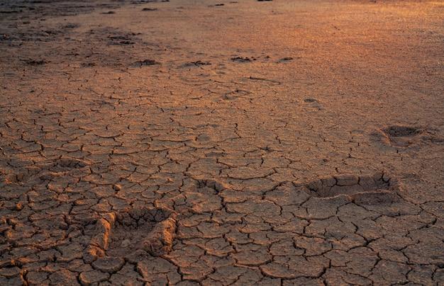 Klimawandel und dürre. wasserkrise. trockenes klima. boden knacken. erderwärmung. umweltproblem. naturkatastrophe. trockener boden. fußabdruck auf dürre land.
