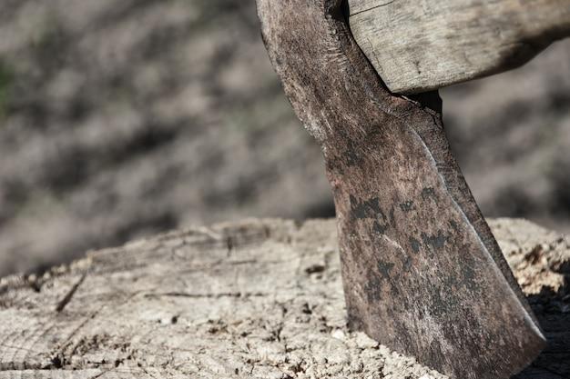 Klinge der axt ragt heraus in einem hölzernen stumpf, holzfäller, bäume, furcht, gewalttätigkeit, verbrechen, kopienraum schneidend