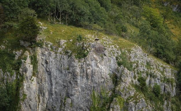 Klippen der cheddar-schlucht vom hohen standpunkt aus.