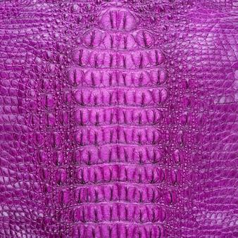 Knochehautbeschaffenheit des süßwasserkrokodils rosa