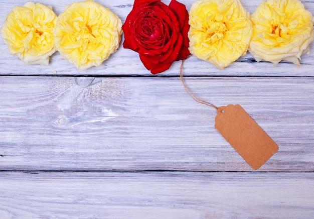 Knospen von gelben rosen mit rotrose