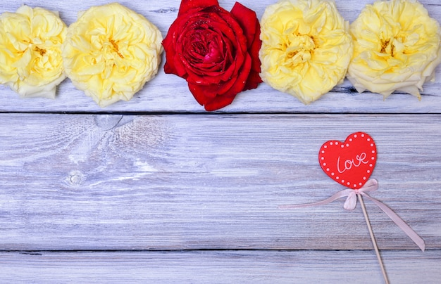 Knospen von rosen auf einem weißen hölzernen hintergrund