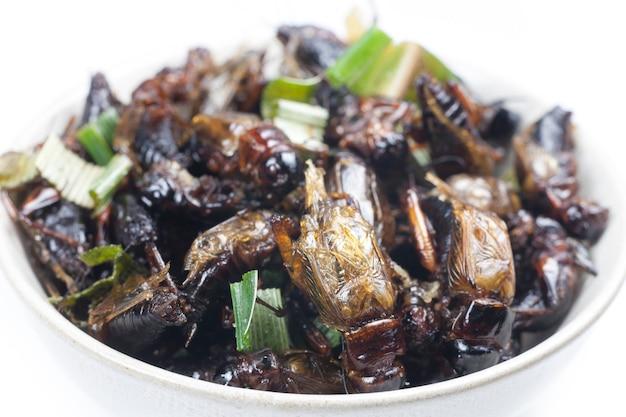 Knusprige gebratene insekten thailändisches menü essen.