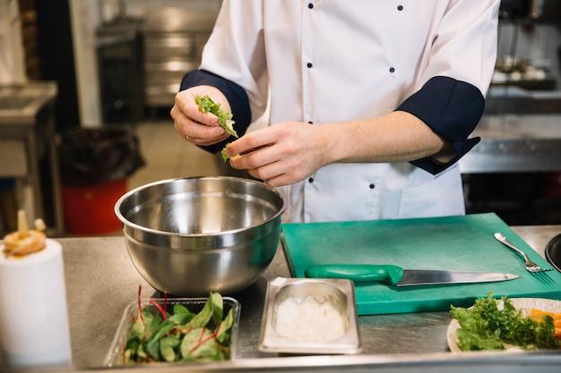 Kochen sie, grünen kopfsalat in schüssel einfüllend