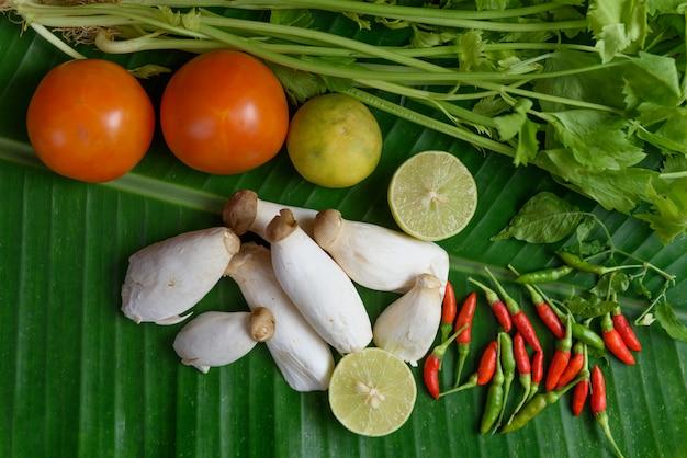 König austernpilz, tomate, limette, chili und sellerie auf frischem bananenblatt