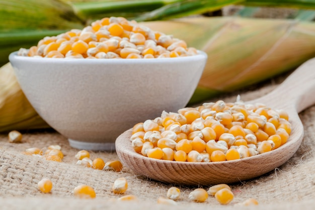 Körner von getrocknetem mais.