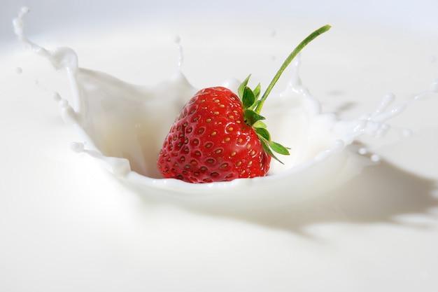 Köstliche erdbeere, die in milch spritzt