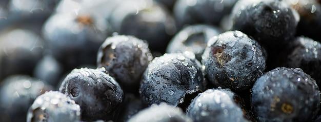 Köstliche frische blaubeeren vorderansicht
