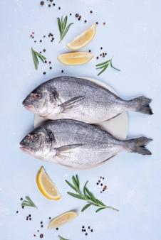 Köstliche rohe brassenfisch flach liegen