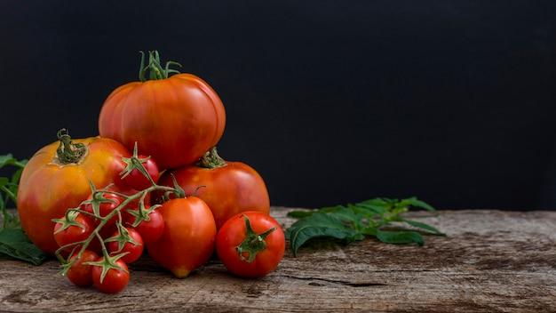 Köstliche tomatenanordnung