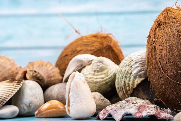 Kokosnüsse, felsen und muscheln auf blauem holzhintergrund. marinethema