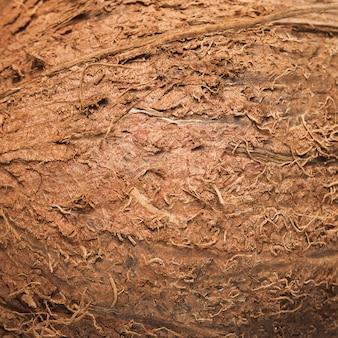 Kokosnüsse hintergrund