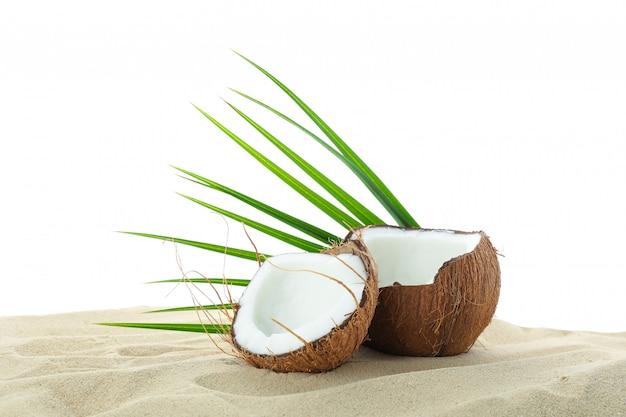Kokosnüsse und palmblatt auf klarem meersand lokalisiert auf weißem hintergrund. sommerurlaub