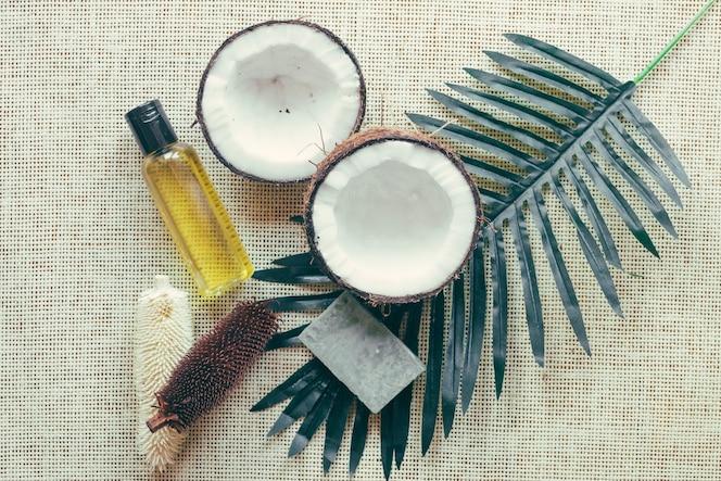 Kokosnüsse und palmblatt
