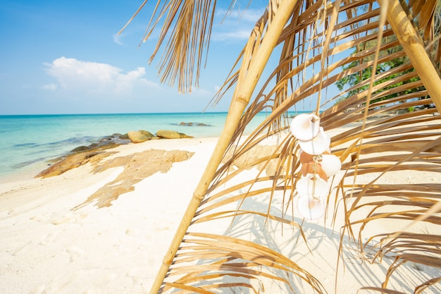 Kokosnussblattbogen auf dem strand, entspannende zeit der sommerferien
