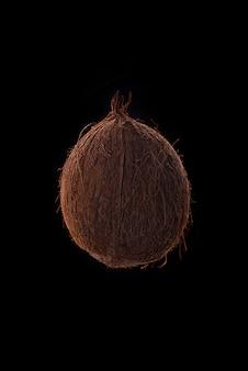 Kokosnussfrucht über schwarz