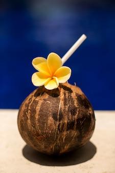 Kokosnussgetränk mit gelber blume