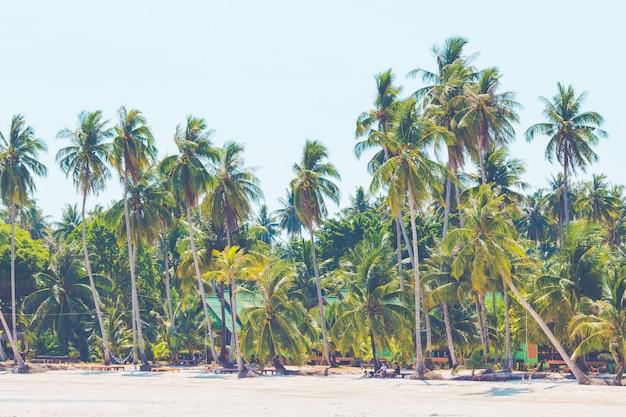 Kokospalmen, die an einem tag des klaren himmels, koh kood, thailand zum meer herausragen