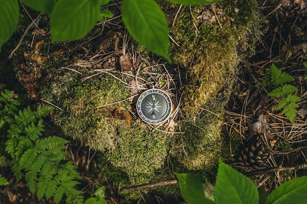 Kompass im wald, vor dem hintergrund von moos und baumblättern.