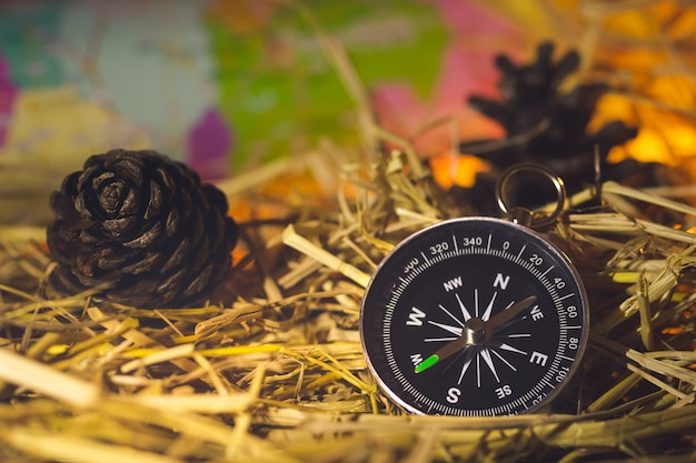 Kompass mit papierkarten und kiefernblumen auf trockenem weizenstroh im morgensonnenlicht.