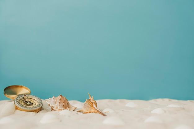 Kompass und mollusken auf blauem hintergrund