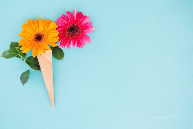 Komponierte gerbera-blüten in waffel
