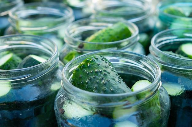 Konservierungssalzprozess gurken für den winter, gläser mit essiggurken