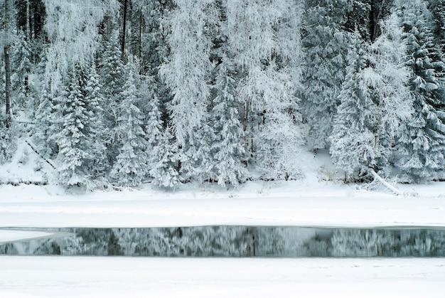 Kontrastieren sie die bewaldete winterküste eines zugefrorenen flusses mit einem streifen offenen wassers unter dem eis
