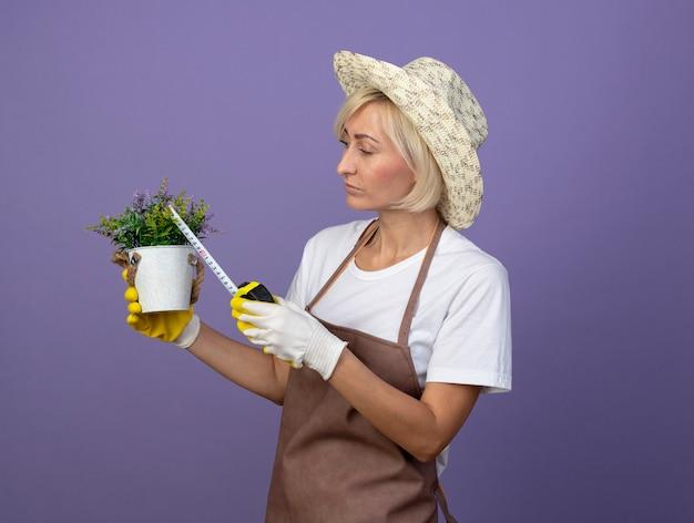 Konzentrierte blonde gärtnerin mittleren alters in uniform mit hut und gartenhandschuhen, die in der profilansicht steht und den blumentopf mit einem bandmesser anschaut und misst