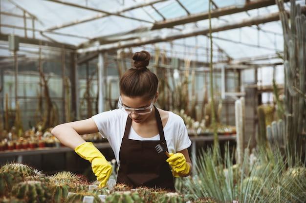 Konzentrierte junge frau, die im gewächshaus nahe pflanzen steht