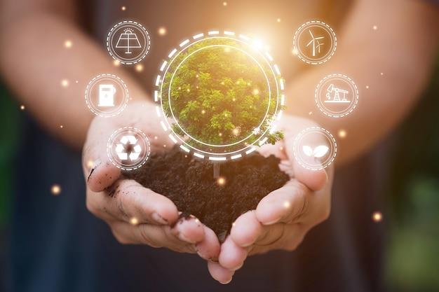 Konzept der erneuerbaren, nachhaltigen energiequellen. hand, die baum über unscharfem naturhintergrund hält.