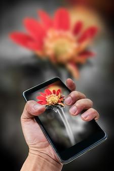 Konzept der mobilen fotografie. hand, die smartphone hält und foto macht