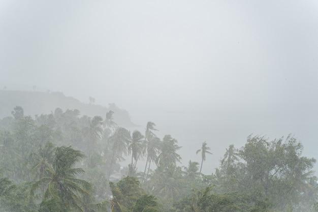 Konzept der naturkatastrophe. tropischer sturm, der während der monsunzeit am mittag einen sintflutartigen regen bringt